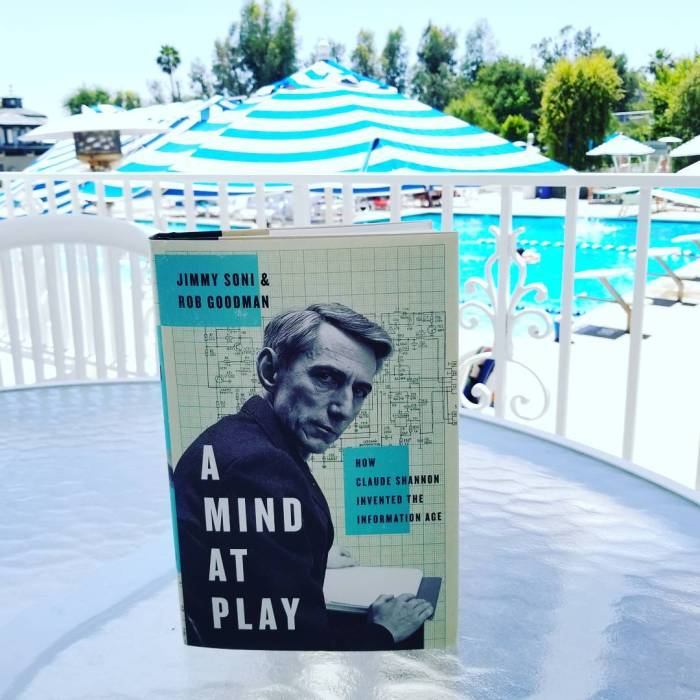 The quintessential poolside summer reading: A Mind at Play