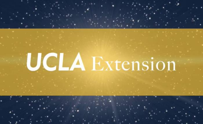 Introduction to Algebraic Geometry | UCLA Extension in Fall2017